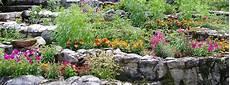 Ideen Gestaltung Steingarten - steingarten