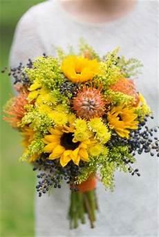 Kitchen Bouquet In Australia by 220 Best Leucospermum Pincushion Bouquets Arrangements