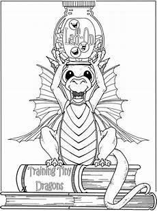 coloring pages dragons and fairies 16609 fanciful fairies and dazzling dragons coloring book dover publications coloring page
