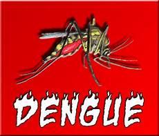 Materi Penyuluhan Dengue Hemoragic Fever Dhf Dbd Quot Live