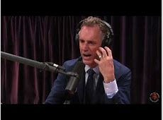 joe rogan jordan peterson 1139