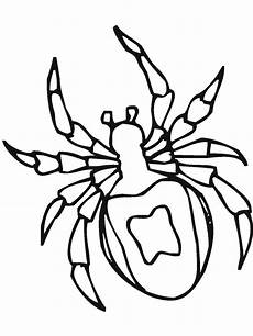 Window Color Malvorlagen Spinne Spider Insect Coloring Page Coloring Sky