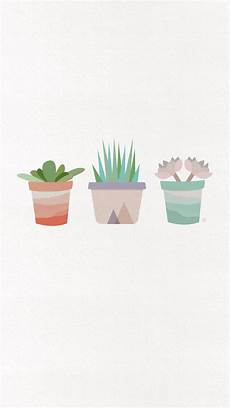 aesthetic cactus iphone wallpaper aesthetic succulents wallpapers top free aesthetic