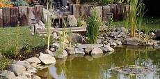 Teichrand Gestalten Gartenteich