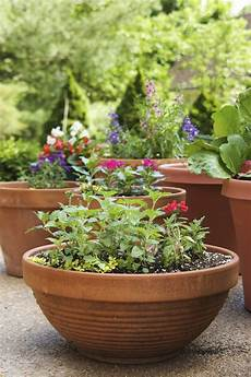remodelaholic how to create the container garden