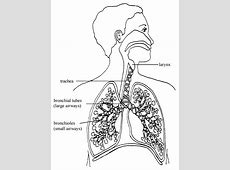 throat pain when inhaling