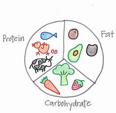 Diagram For Food That Are Carbohydrate by Lose And Reduce Percentage With Basic Math