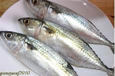 Asam Pedas Ikan Kembung Potret Kasih