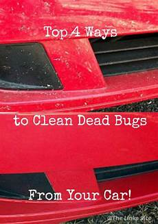 top four ways to clean dead bugs from the front of a car the links site