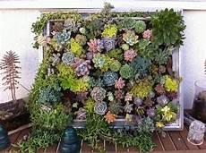 Vertikalen Garten Selber Bauen Projekte F 252 Rs Haus Zum