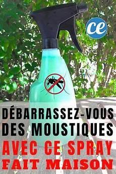 d 233 barrassez vous des moustiques dans le jardin avec ce