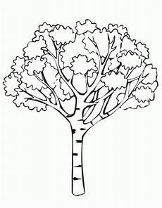 araguaney dibujo para colorear dibujo de el arbol araguaney imagui