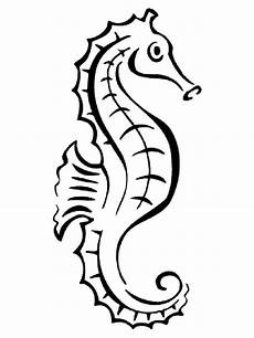 seahorse coloring pages and print seahorse