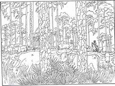 wood animals coloring pages 17194 forest woods coloring page for printer friendly versions of images and text click below
