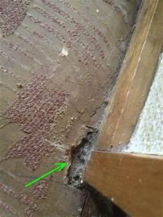asbest im boden is dit asbest op de vloer