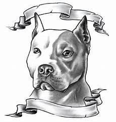 dessin bull american staffordshire terrier pitbull with ribbons tattoos pitbulls pitbull
