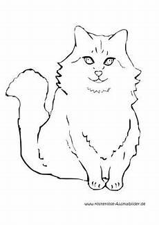 Malvorlage Sitzende Katze Ausmalbilder S 252 223 E Katzen Malvor