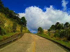 Gambar Pemandangan Pohon Alam Awan Pagi Jatuh