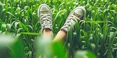 enlever odeur chaussure comment enlever les odeurs dans les chaussures