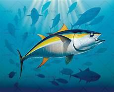 Gambar Ikan Tuna Kartun 187 Designtube Creative Design Content