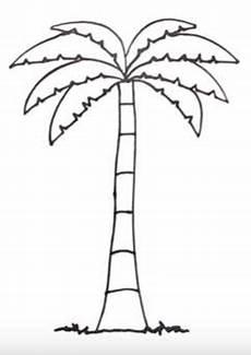 palma llanera para colorear imagenes de palmeras para imprimir imagenes y dibujos para