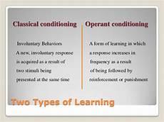 behaviorism in
