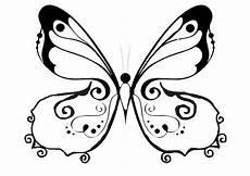 Malvorlage Schmetterling Gratis Schmetterling 7 Malvorlage Schmetterling Blumenzeichnung