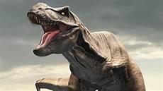 Malvorlagen Dinosaurier T Rex Vk Tyrannosaurus Paleontology World