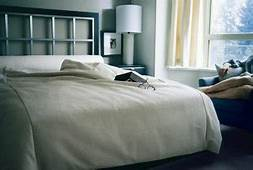 Bedroom Ideas From Headboards To Colors  Home Guides SF