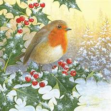 assorted robin charity christmas card