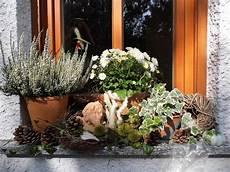 Herbstdeko Auf Der Fensterbank Bilder Und Fotos