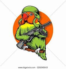 Top 49 Gambar Burung Lovebird Lucu Gokil
