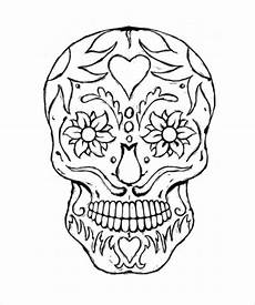 skull drawing template 14 free pdf documents download free premium templates