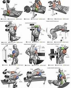 exercises y and en 19133 pin en cuerpos