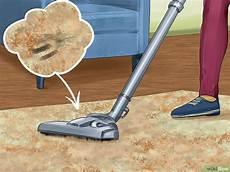 Teppich Geruch Entfernen Natron - hundegeruch aus dem teppich herausbekommen wikihow
