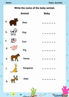 worksheets class 1 animals worksheets for class 1 animal worksheets worksheets free