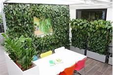 Plant Ed Wall Pflanzen Paravent Gr 252 Ner Raumteiler