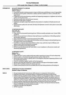 auditor quality resume sles velvet