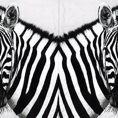 Serviette Papier Portrait De Zebre Noir Et Blanc Afrique