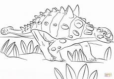 Ausmalbilder Dinosaurier Ankylosaurus Ausmalbild Euoplocephalus Ausmalbilder Kostenlos Zum