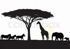 afrikanischer baum silhouette africa silhouette background stock vector colourbox