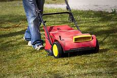 Rasen Erneuern 187 So Sprie 223 T Er Wieder Gr 252 N Und Gesund