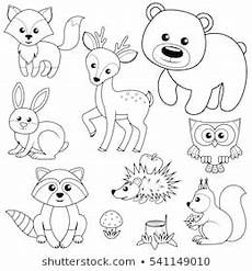 baby woodland animals coloring pages 17514 coloring book images stock photos vectors