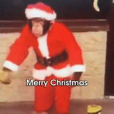 merry christmas gif monkey merrychristmas santaclaus discover share gifs