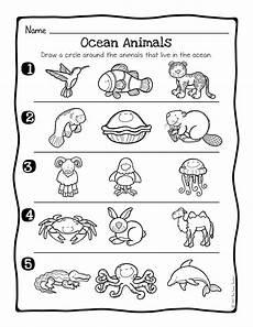 animal habitat worksheets 13889 animal habitats science activity and worksheets the