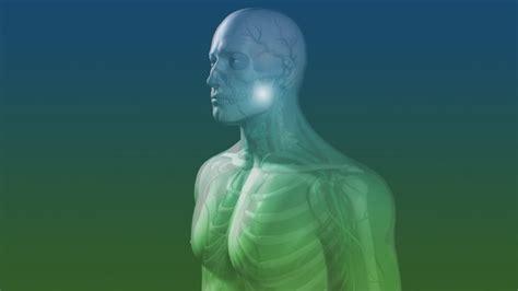 New U Life Hgh (human Growth Hormone) Somaderm Gel