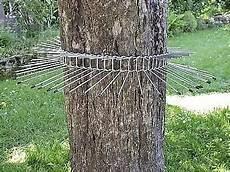 katzenabwehrgürtel selber bauen vogelschutz wie katzenabwehrg 252 rtel bestellen bei