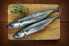 Tips Dari Chef Cara Bedakan Ikan Makarel Dengan Sarden