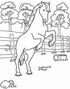 coloring book page stallion illustration by jess