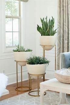 pflanzen deko wohnzimmer deko pflanzen wohnzimmer